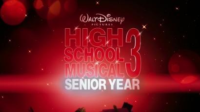 18 hónap börtönre ítélték a High School Musical sztárját