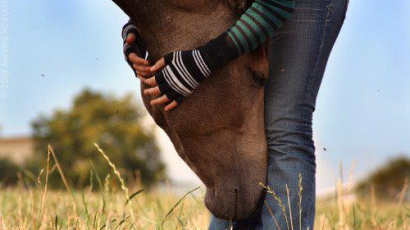 Mit kell tudnunk a lovaglásról?