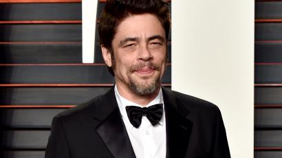 "Benicio Del Toro Cannes-ben ""elnököl"""