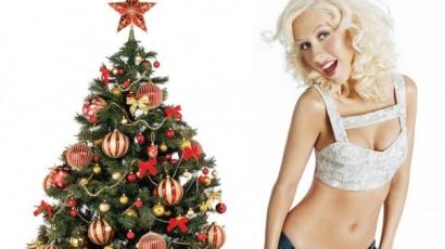 Christina Aguilera olyan részeg volt, hogy kis híján tönkretette a dekorációt Seth MacFarlane ünnepi partiján