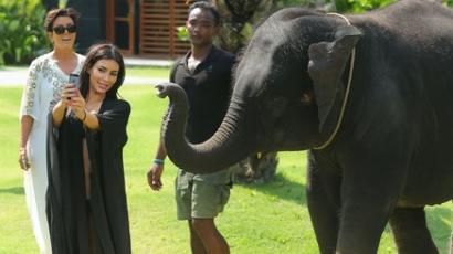 Elefánt ijesztett Kim Kardashianra