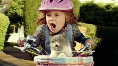 Ilyen egy tiszta lélek! Egy gyermek befogadott egy megcsonkított cicát