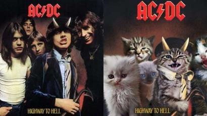 Ezúttal cicákká változtak kedvenc zenészeink
