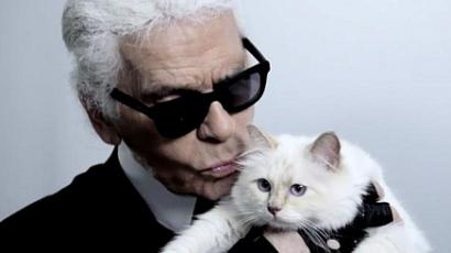 Feleségül venné a macskáját a legendás divattervező