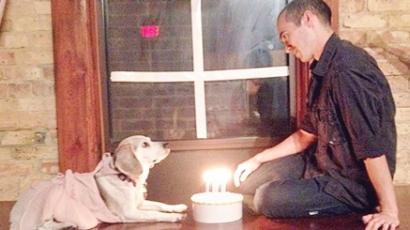 Főnöke kutyájával romantikázik az amerikai férfi