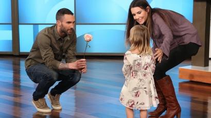 Hároméves rajongó bolondította magába Adam Levine-t