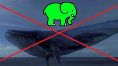 Zöld Elefánt, avagy lépjünk fel a Kék Bálna ellen!