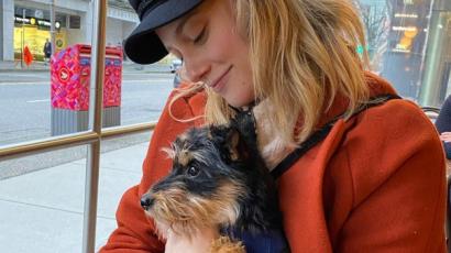Lili Reinhart fellélegezhet: Milo túlélte a műtétet