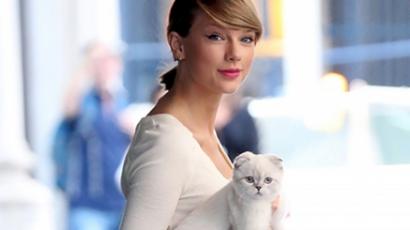 Macskája inspirálta Taylor Swiftet cipője tervezésekor
