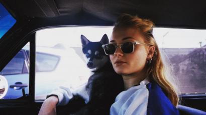Szomorú hír! Joe Jonas és Sophie Turner kutyusa baleset miatt pusztult el