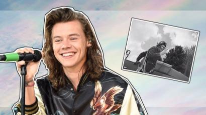 Harry Styles elhunyt rokona kísértetiesen hasonlít az énekesre