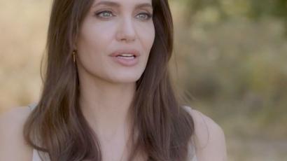 Videó: Angelina Jolie Provance-ban méhészkedett