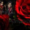 vampire diaries fan