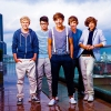 FanniDirectioner