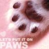 Passion Paw