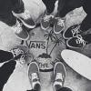 Vans_66