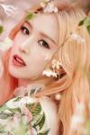 Hong Eui Jin