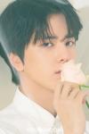 Kim Young Hoon (II)