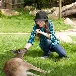 sev_miranda_cosgrove_world_kangaroo.jpg