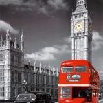 london08.jpg