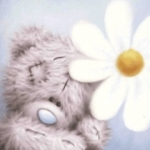 Teddy_Love.jpg
