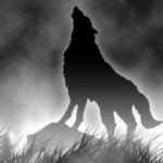 wolfs_rain.jpg