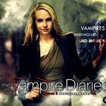 season-2-wallpaper-the-vampire-diaries-15232961-1024-768.jpg