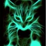 macsek.jpg