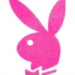 logo playboy 3.jpg