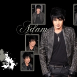 Adam-Wallpaper-adam-lambert-9604926-1680-1050.jpg