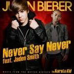never say never.jpg