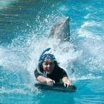 Delfin és Miley