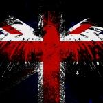 Hawk-on-the-English-flag.jpg