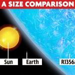 star-r136a1-size-comparision-859814413.jpg