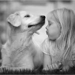 mindegy állat vagy ember csak barát legyen