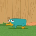 Perry_in_the_backyard.jpg