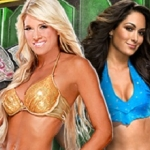 Divas-Champion-Kelly-Kelly-vs-Brie-Bella[1].jpg