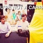 YOU'RE NOT A CARROT.jpg