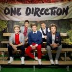 One Direction viaszbabák