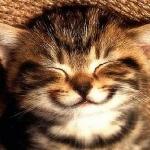 mosoly!!!!!!!!!!!!.jpg