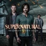 Supernatural_Season_9_BRCover.jpg