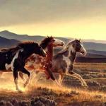 paint horses.jpg