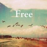 free♥