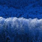 Tél.jpg