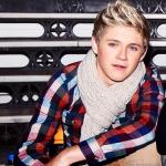 beautiful-boy-cute-niall-horan-nice-Favim.com-280608.jpg