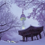 Winter-on-Namsan-Mountain-with-N-Seoul-Tower-in-the-background.jpg