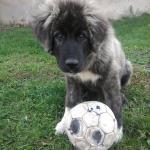 Kis focista..:)