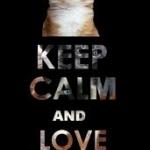 keep calm 2.jpg