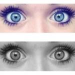 Lottie szeme*-*