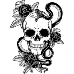 skull-tattoo-vectors%20(1).jpg